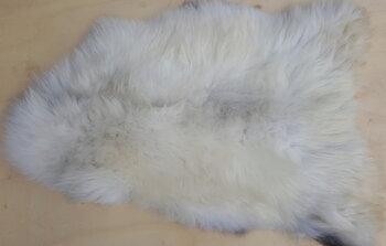 146x88cm.Zeldzaam  groot mooi schapenvacht in wittinten