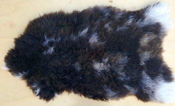 150x80cm. Groot mooi  langharig Schots schapenvacht